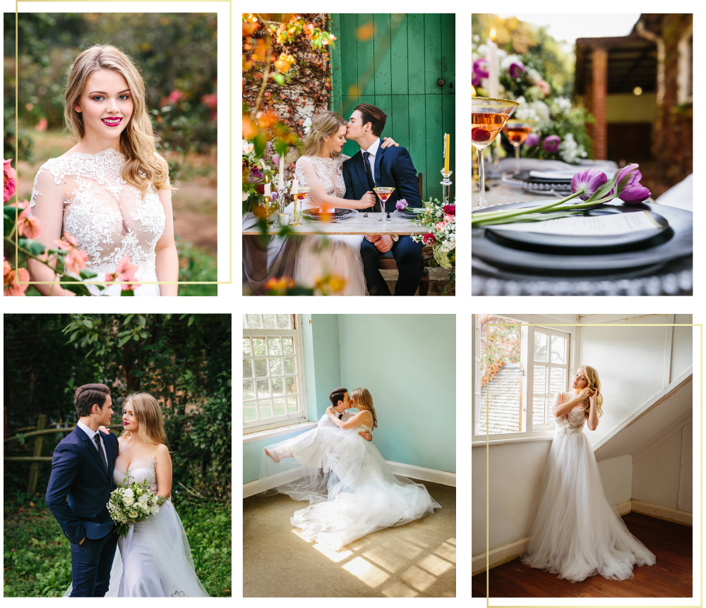 Lauren Setterberg Photography Styled Shoot with Planned to Perfection Collage